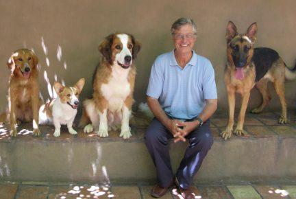 Какая порода собак в фильме «Собачья жизнь»