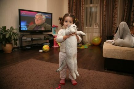 Дочка Ксении с котом Шанти