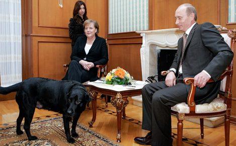 Путин на встрече с Меркель