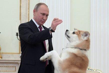 Путин с Юмэ
