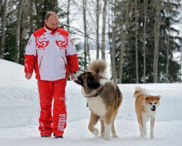 Путин с собаками на прогулке