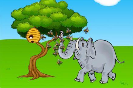 Слоны — пугливые животные