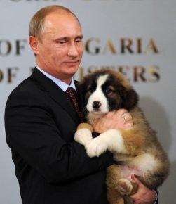 Путин и Баффи