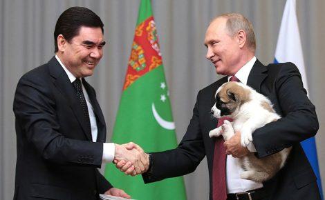 Вручение Путину алабая