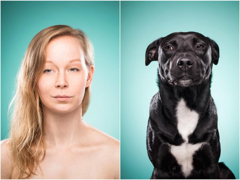 фотопроект животные похожи на хозяев конфликта аптеке, оскорбил