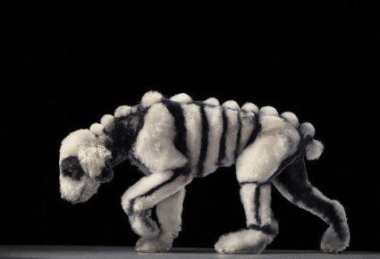 Безумная собачья стрижка в виде скелета