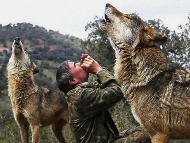 Маркос Родригес 12 лет жил с волками
