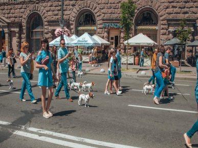 Парад джек-расселов в Киеве