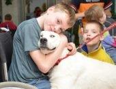 Собака и дети-инвалиды
