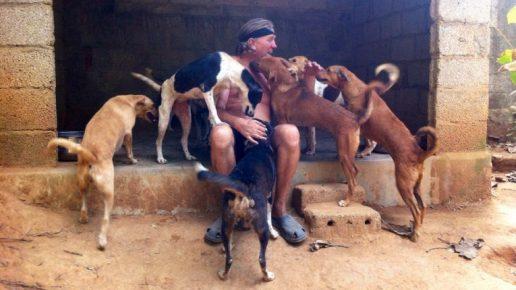 Спасение собак в Индии