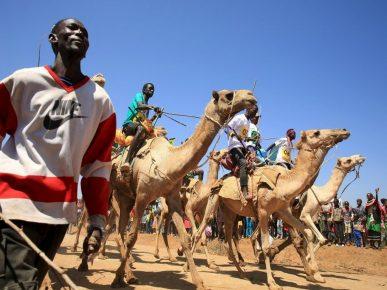 Maralal International Camel Derby
