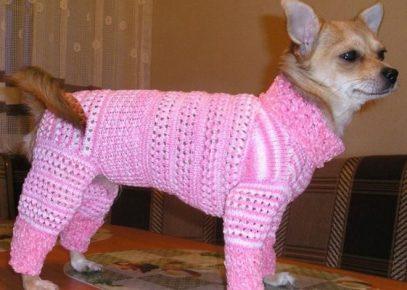 Красивый розовый костюм для собаки создан своими руками