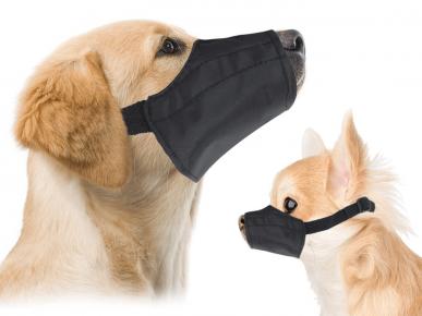 Собака в мягком наморднике
