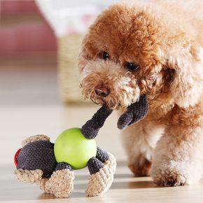 Собака с забавной игрушкой в зубах