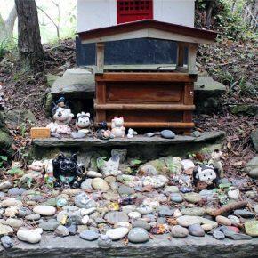 храм кошек на острове