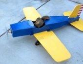 Белка в самолёте