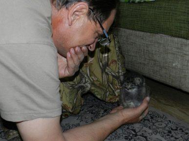 Маленький манулёнок на ладони Вадима