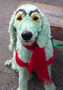 Собака с раскраской для хэллоуинской вечеринки