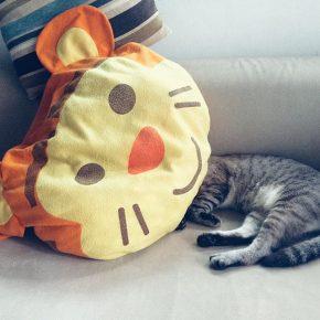 кот под подушкой в форме тигра