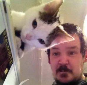 кот фотографируется с хозяином