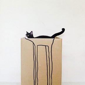 Самый длинноногий кот
