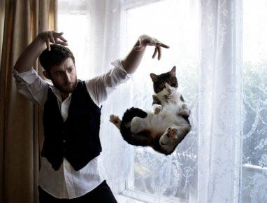 Уроки Дэвида Копперфильда с котом