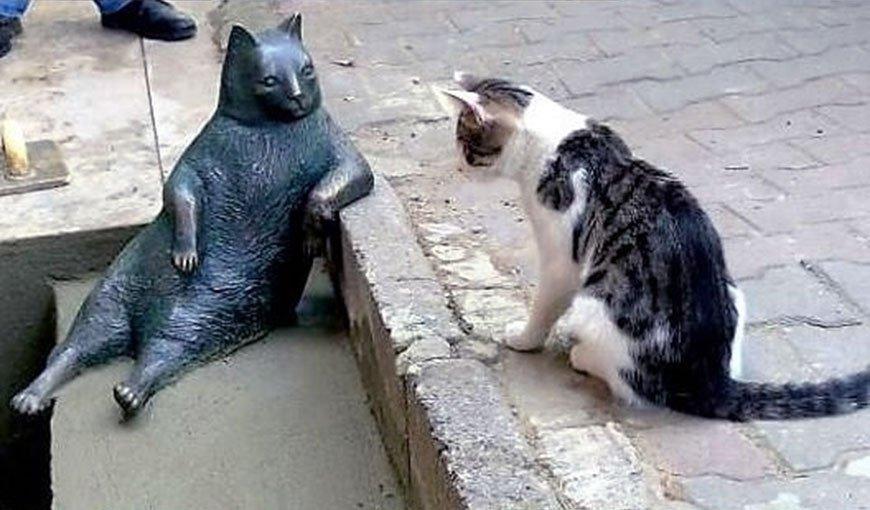 Памятник коту Томбили