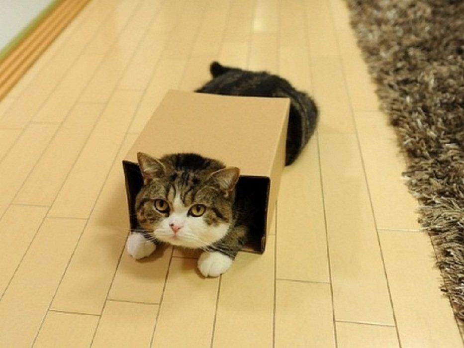 Коробка оказалась маловата