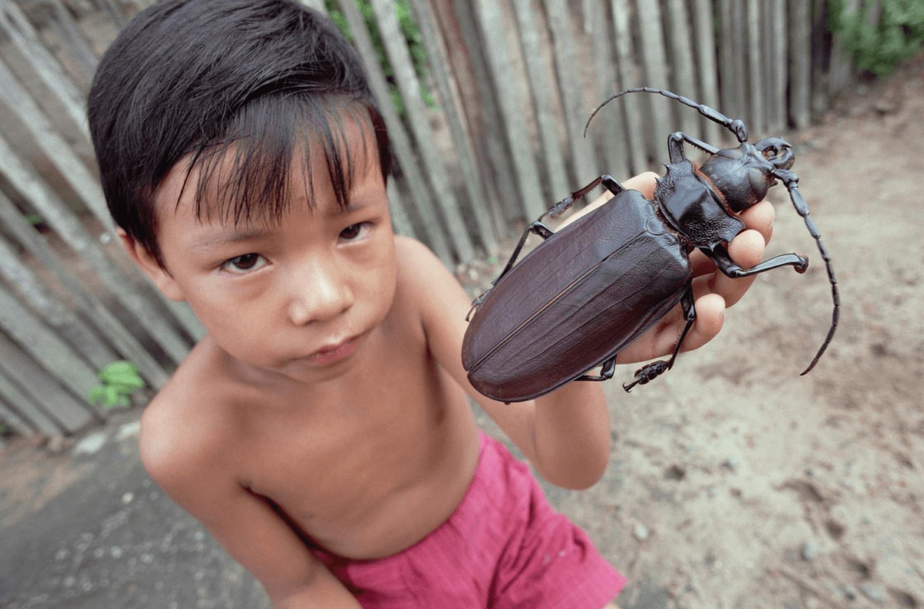 Девочка держит жука-титана