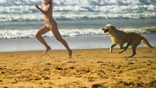 Девушка играет с собакой в догонялки