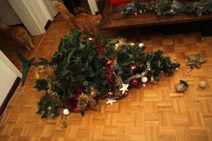 Коты уронили ёлку