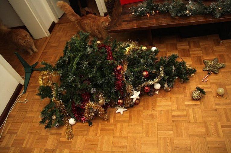 Кот роняет елку картинка