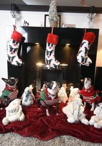 Собаки и рождественские носочки