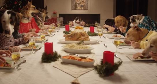 Собачий рождественский бал