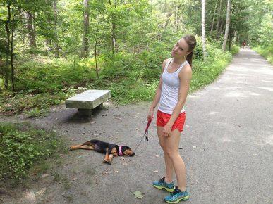 Собака уснула на прогулке