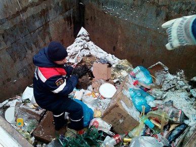 кот застрял в мусорном баке