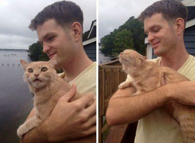 Кошка в первый раз оказалась на улице