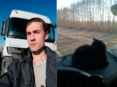 Алексей Довыденко и его кошка