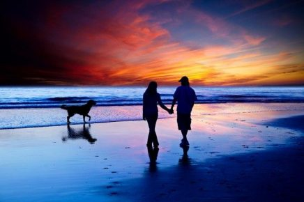Мужчина, женщина и собака у моря