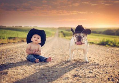 Ребёнок и собака на дороге