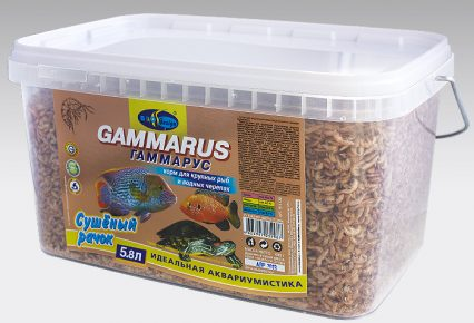 Гаммарус в коробке