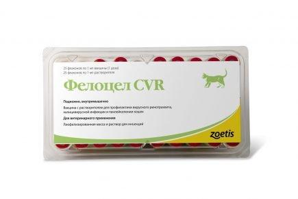Фелоцел CVR