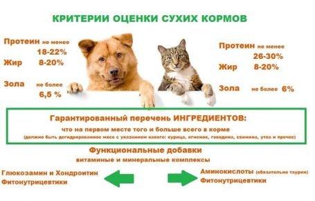 Критерии оценки сухих кормов для кошек и собак