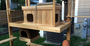 Домики внутри вольера для кошек