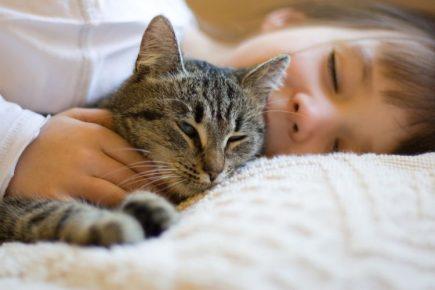 Ребёнок обнимает кота