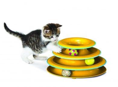 Интерактивные игрушки для котят