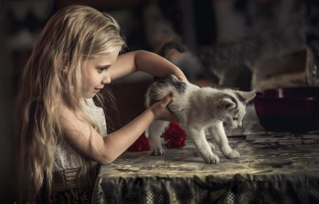 Девочка держит котёнка
