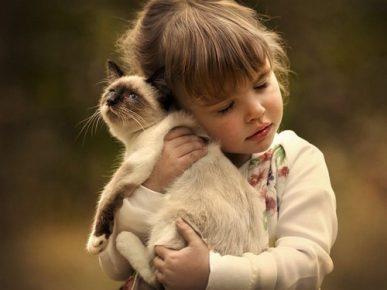 Девочка держит кошку на руках
