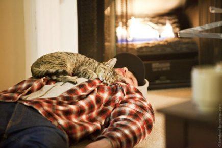 Кот спит на груди человека