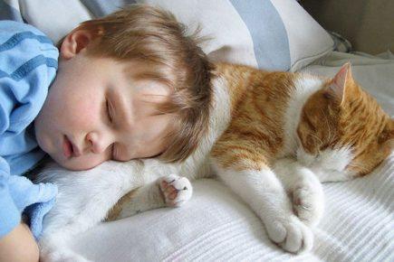 Котёнок и ребёнок